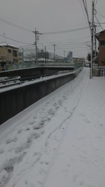 20130114 大雪.jpg