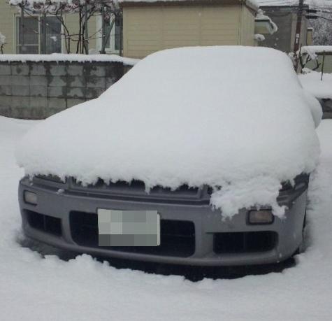 雪まみれ相棒.JPG